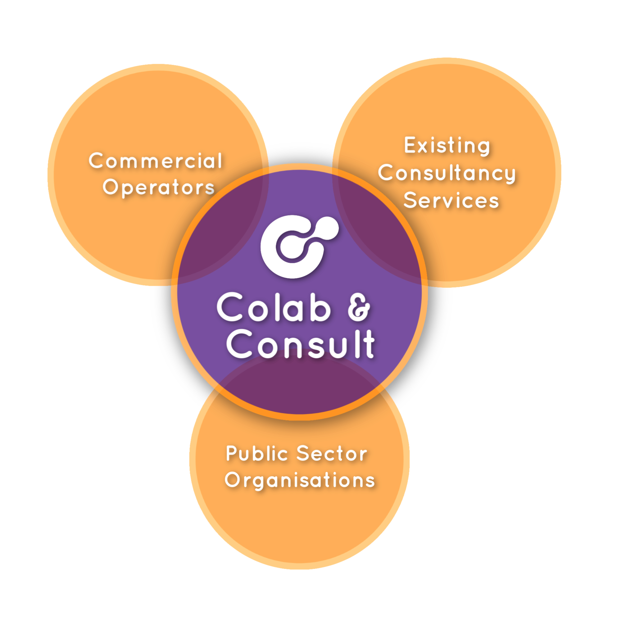 Collab&ConsultGraph